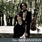 Violon, violoncelle, piano (FR)